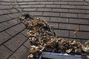 4 Ways to Protect Your Home's Roof From Storm Damage